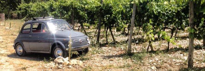 500 auto vintage tour Siena Toscana