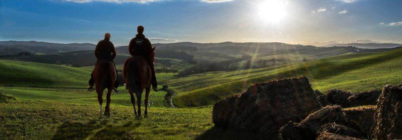 A cavallo per le terre di Siena