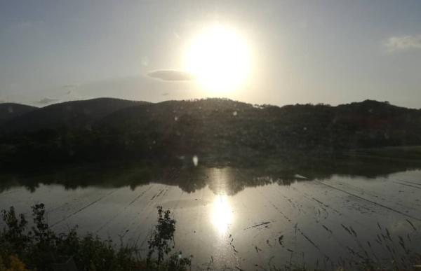 Rice fields Murlo
